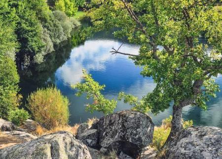 España, Sanabria, Spain, Zamora, agua, backwater, reflection, reflejo, regato, river, río, tree, water, árbol