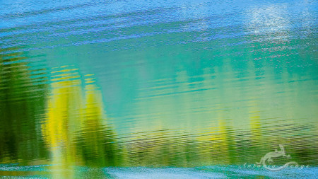 España, Sanabria, Spain, Zamora, agua, reflection, reflejo, river, río, tree, water, árbol