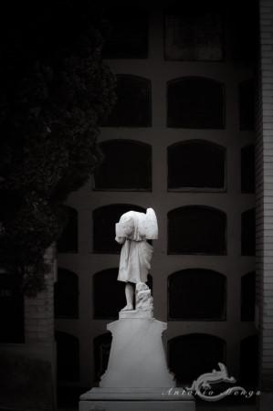 Cementerio, Madrid, angel, escultura, funeral, funeraria, niche, nicho, sculpture