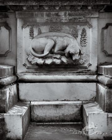 Cementerio, Madrid, dog, escultura, funeral, funeraria, perro, sculpture, sepulcher, sepulcro, tomb, tumba