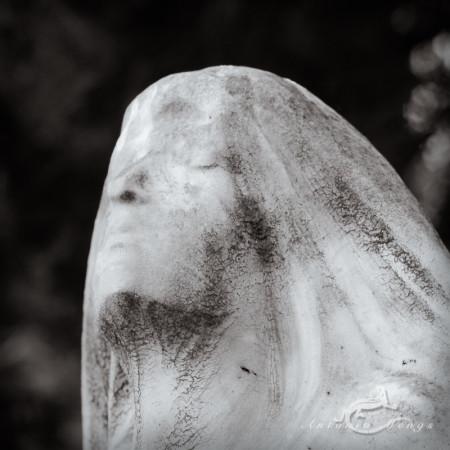 Madrid, cabeza, cementerio, cemetery, escultura, head, mujer, sculpture, veil, velo, woman