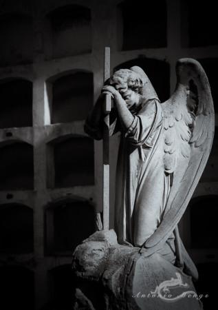 Madrid, cementerio, cemetery, escultura, niche, nicho, sculpture, ángel