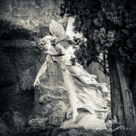 Alcoy, cementerio, cemetery, escultura, sculpture, silence, silencio, ángel