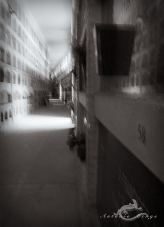 Cementerio, Madrid, cemetery, corridor, niche, nicho, pasillo