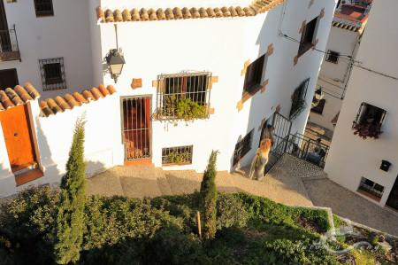 Alacant, Alicante, Altea, architecture, arquitectura, calle, gente, mediterranean, mediterraneo, people, popular, pueblo, street, village