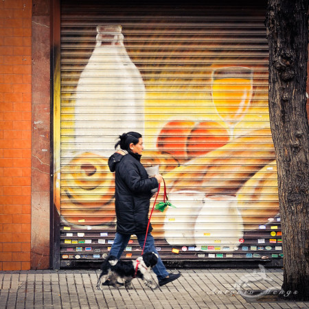Madrid, ad, anuncio, calle, dog, mujer, perro, street, woman