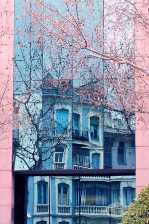 building, edificio, freflejo, reflection, tree, ventana, window, árbol