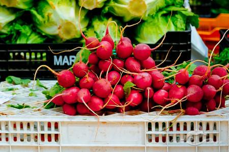 Alacant, Alicante, Alicante Alacant Spàin España, Calpe, España, Spain, market, mercado, radish, rábano