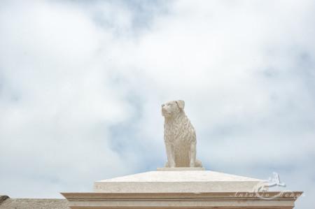 Lapa, Porto, Portugal, cementerio, cemetery, dog, escultura, perro, sculpture, tomb