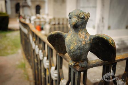 Lapa, Porto, Portugal, bird, cementerio, cemetery, escultura, pájaro, rust, sculpture, óxido