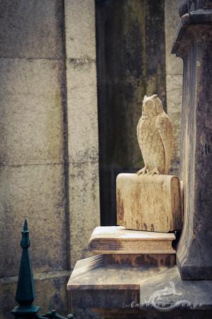 Lapa, Porto, Portugal, book, búho, cementerio, cemetery, escultura, libro, owl, sculpture